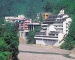十津川温泉郷 一乃湯ホテルに格安で泊まる。
